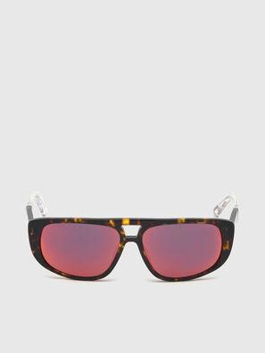 DL0306, Braun/Weiß - Kid Brillen
