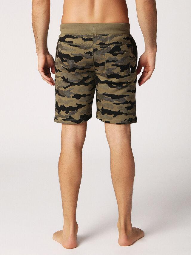 UMLB-PAN, Camouflagegrün