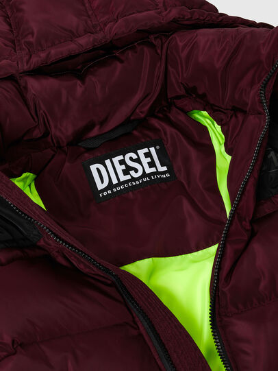 Diesel - W-RUSSELL, Violett - Winterjacken - Image 3